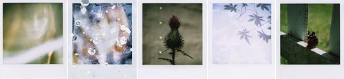 Retro-Fotografie © Bilder: gingero.us (CC BY-NC-ND 2.0) width=